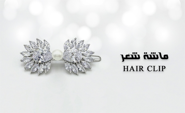 Picture for category Hair Clip